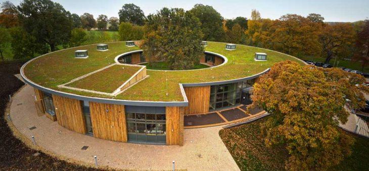 Zu den Vorteilen der Fassaden-und Dachbegrünung