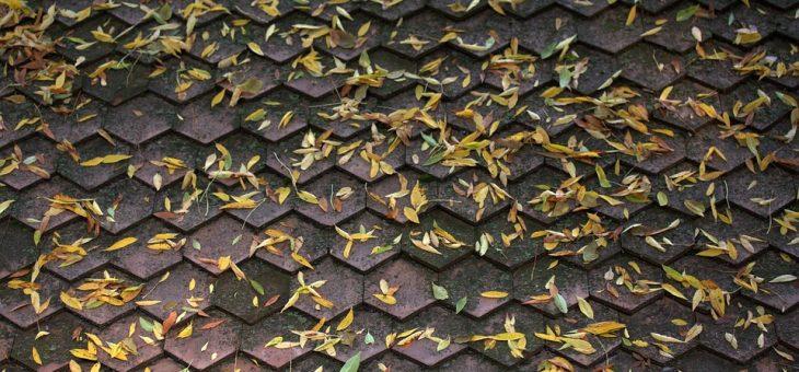 Regenrinnenreinigung im Herbst